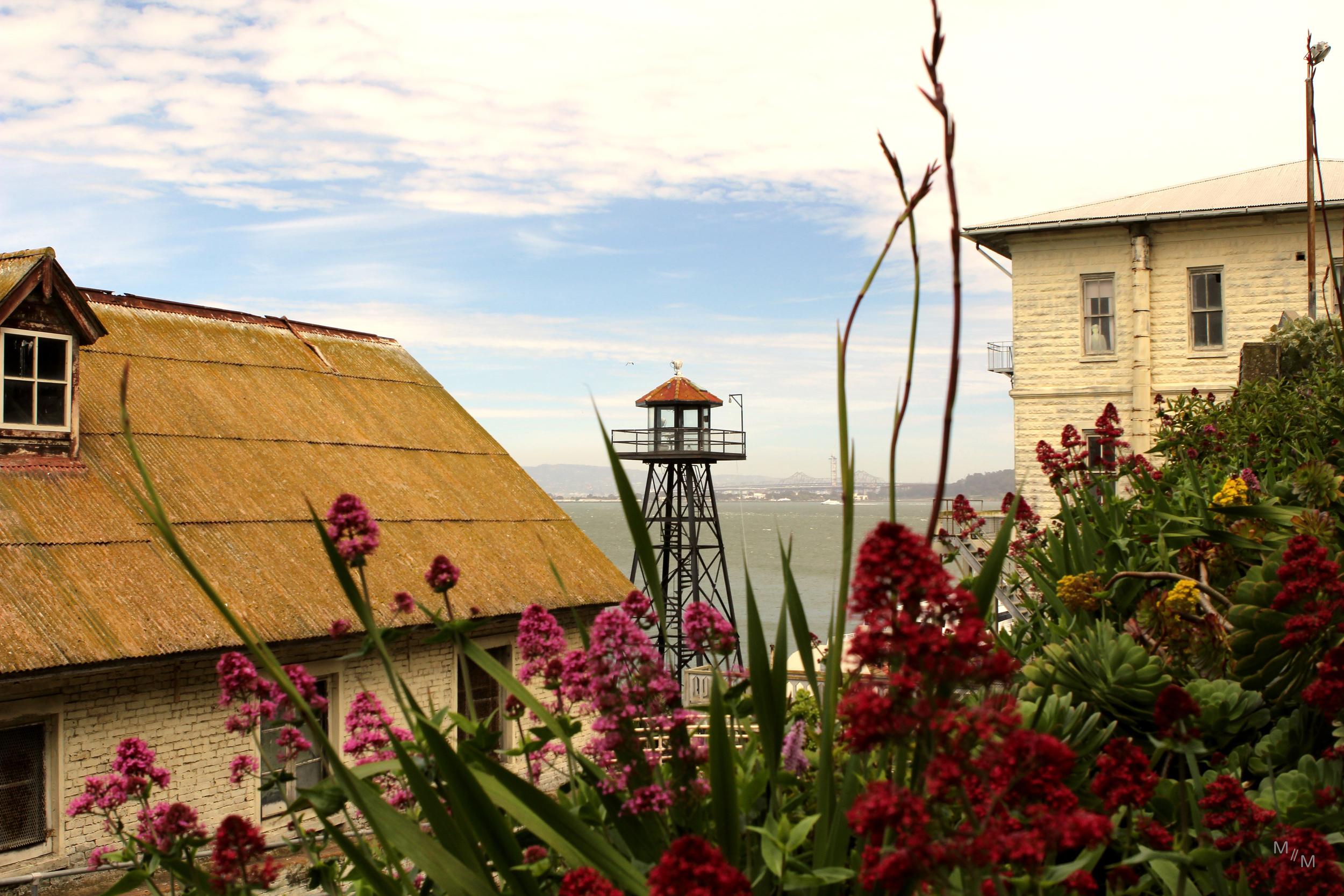 guardtower_flowers copy.jpg