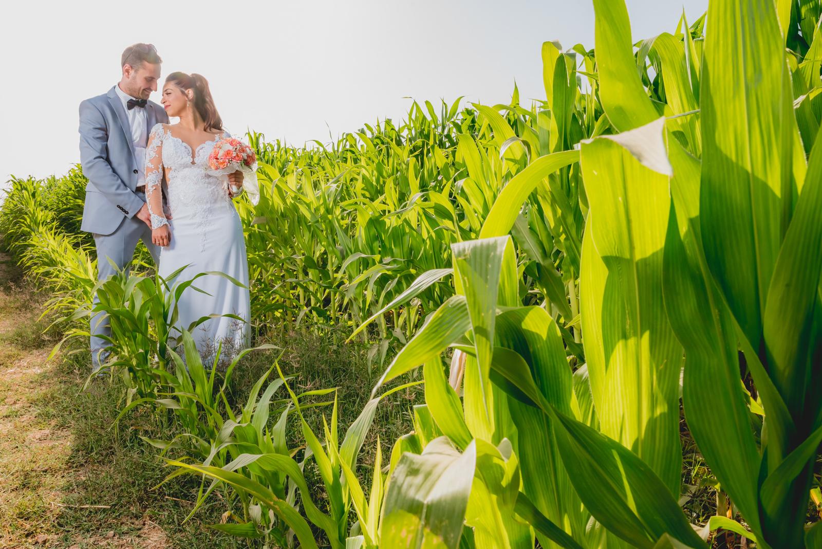 צלם לחתונה צילום חתונה-1009.jpg