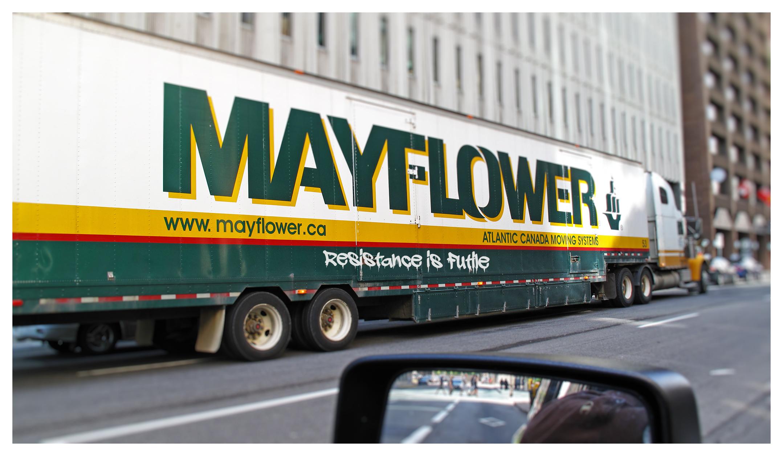 Graffito_Ottawa, Street Scene, Mayflower_postcard_ IMG_0500.jpg