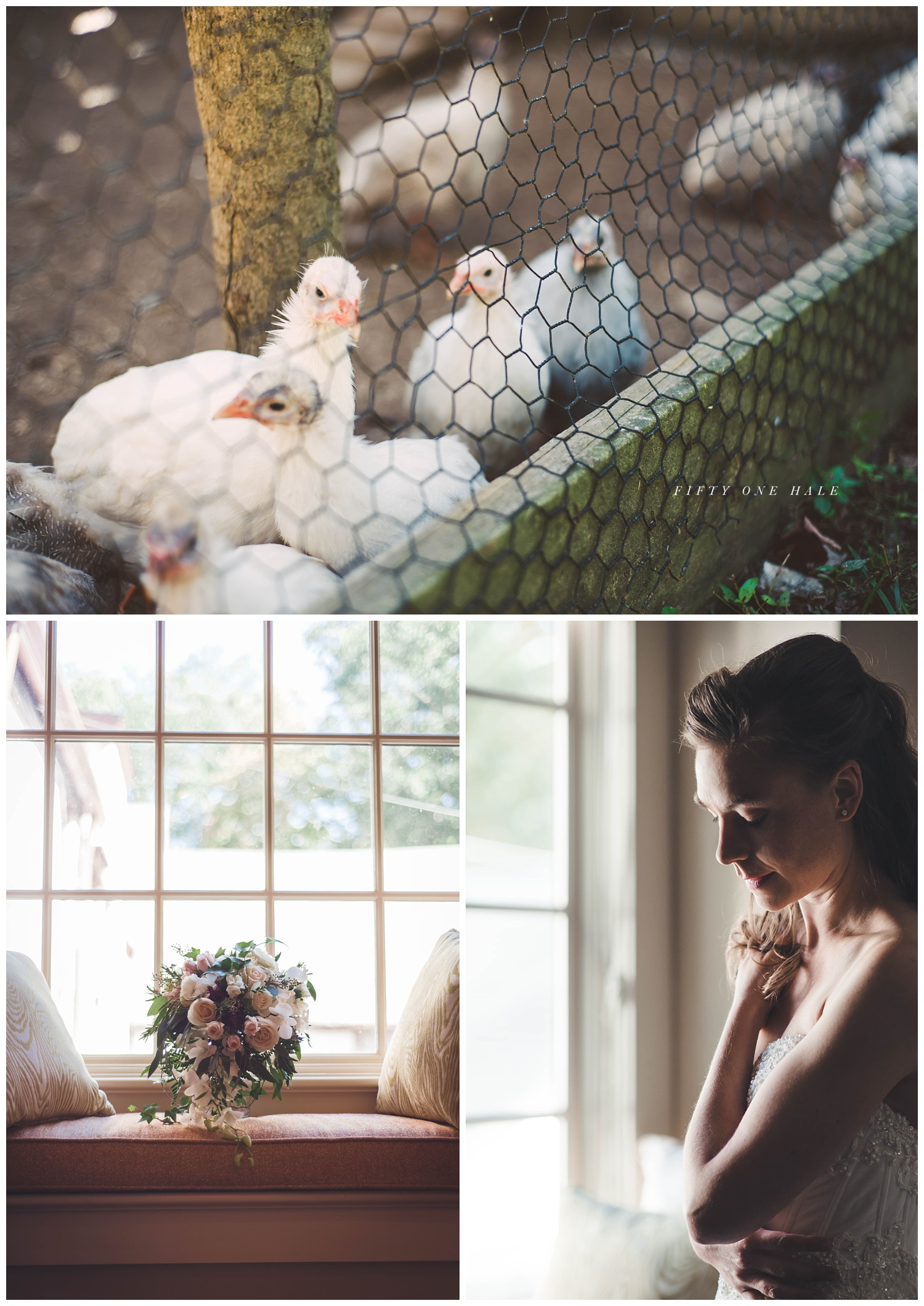 farm_wedding_photographer_boston_0001.jpg