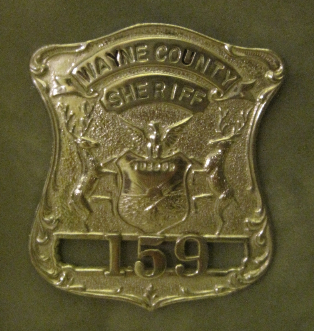 Wayne County Sheriff Department