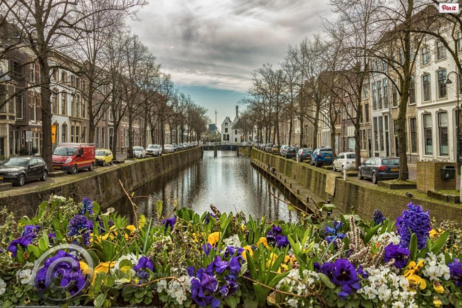Amsterdam 3.jpg