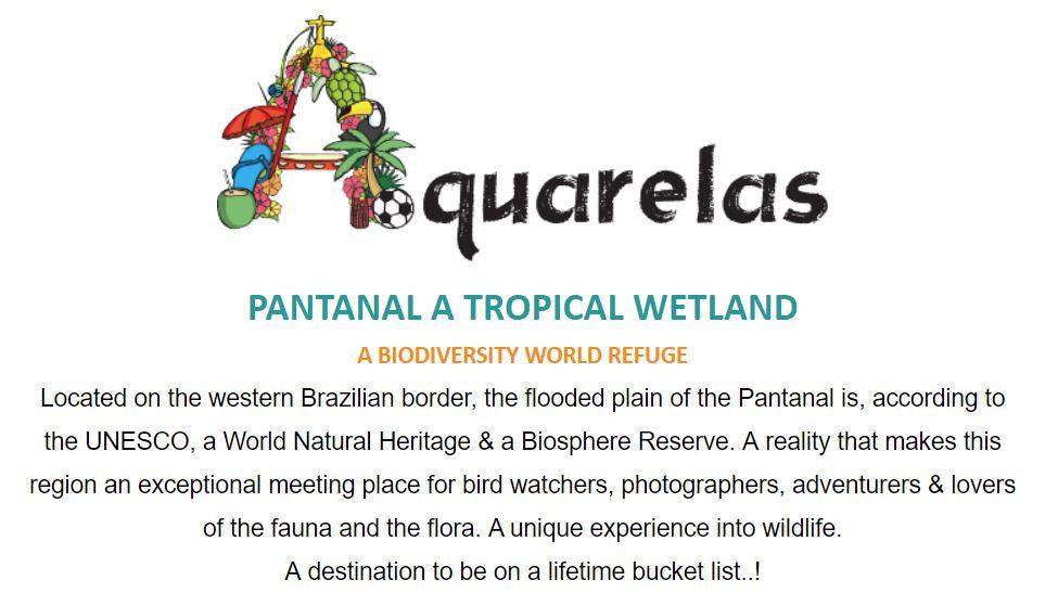 Aquarelas_Wildlife Photography.JPG