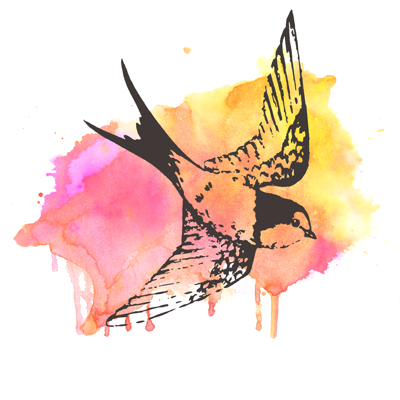 ColorAndQuill-Swallow-Watercolor.png