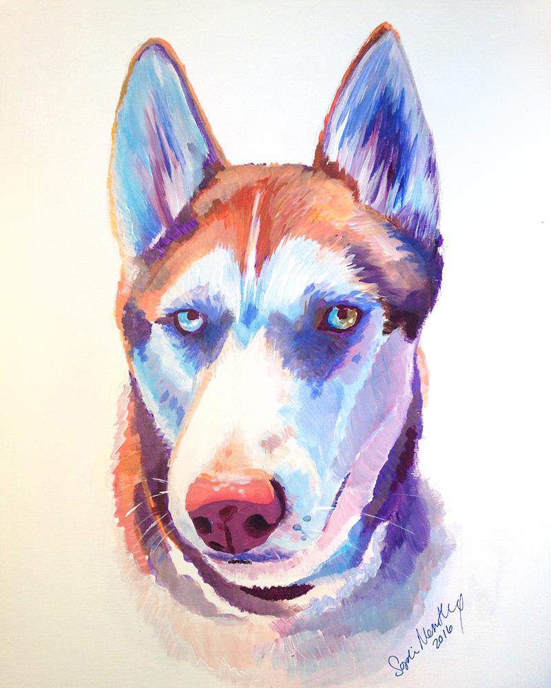 Huskey.jpg