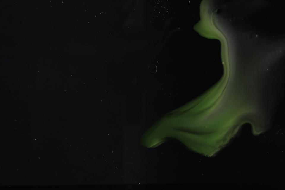 dark bg 8 bright green.00_00_07_23.Still004.png