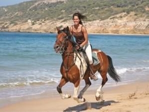 horseback-on-verano_beach.jpg