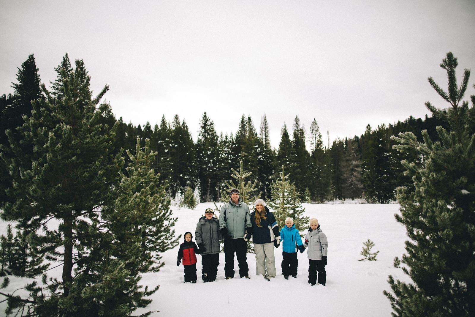 DecemberSequoiaSnow001-2-X3.jpg