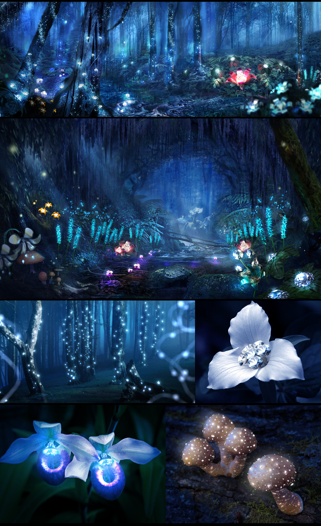 diamondforest_studies.jpg