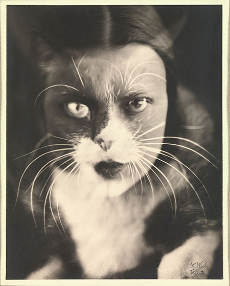 14._Io_gatto_(Cat_I)_Wanda_Wulz_.jpg