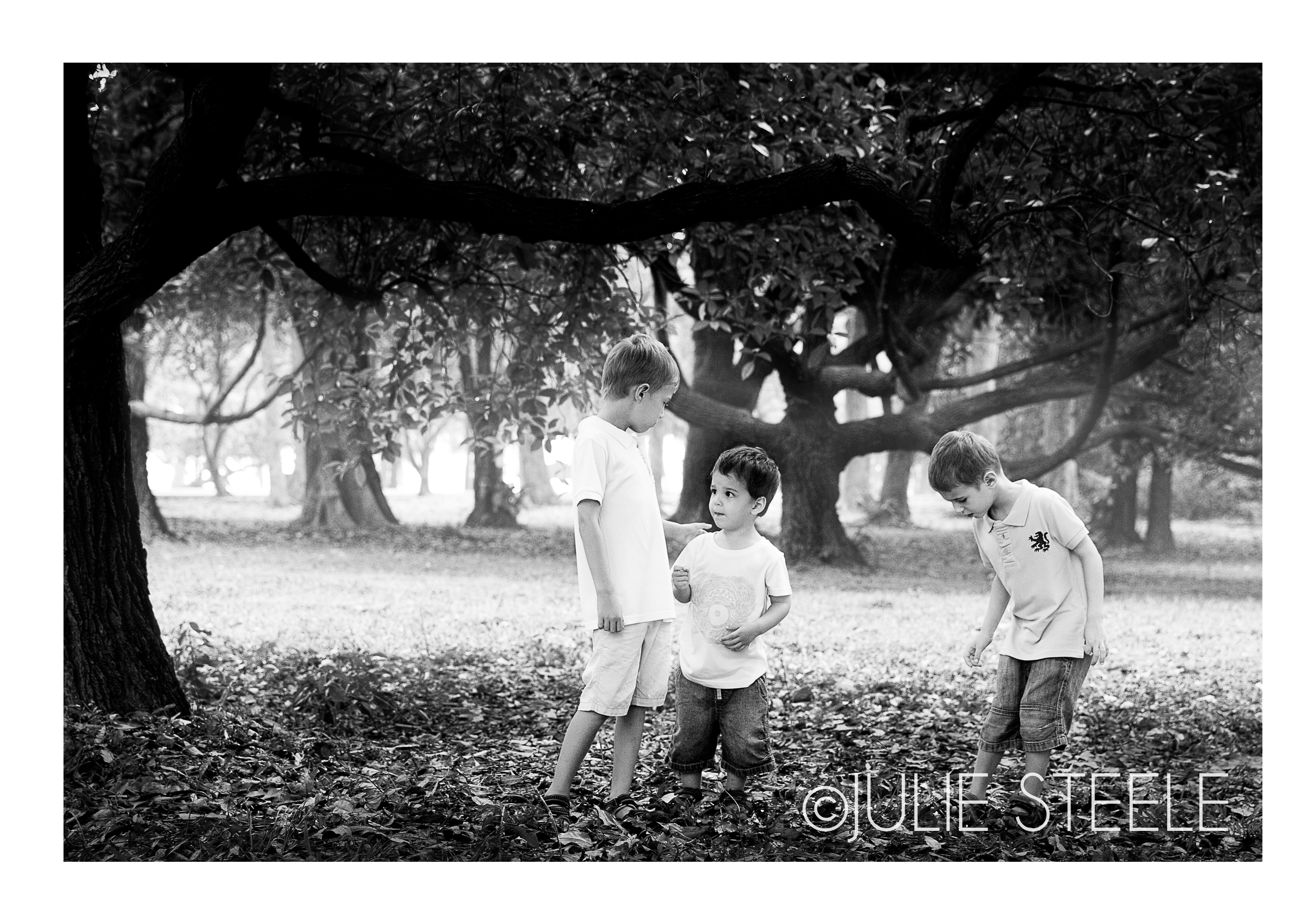 three by tree.jpg