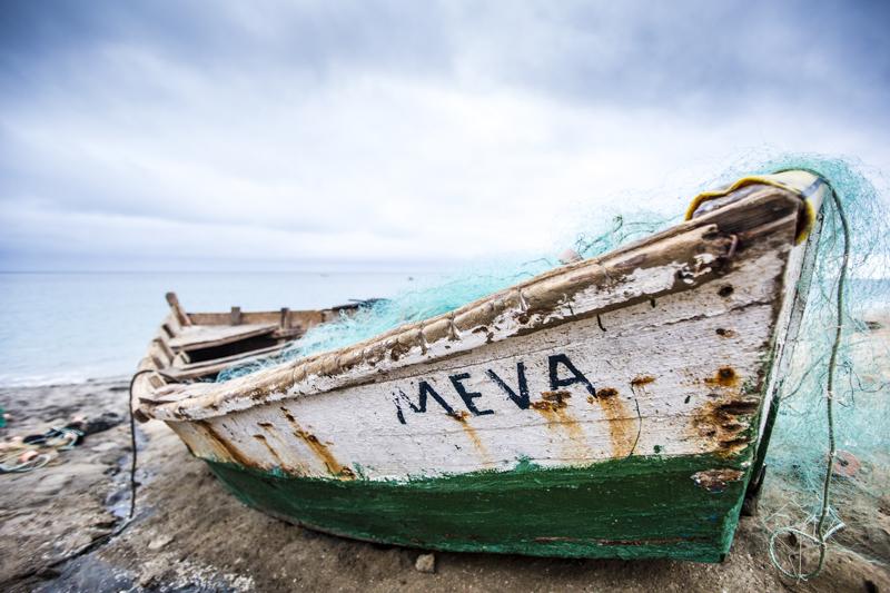 More Meva Greens and Blues  ©24Atlantic
