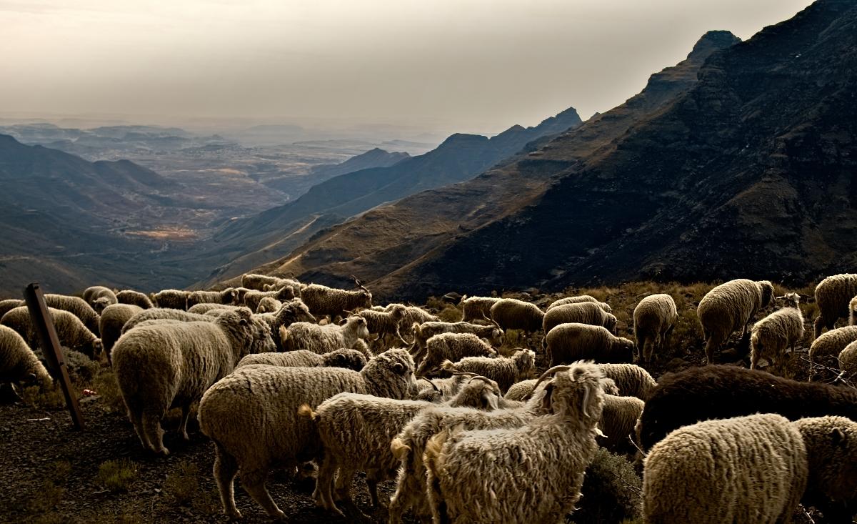 3266 Lesotho.jpg