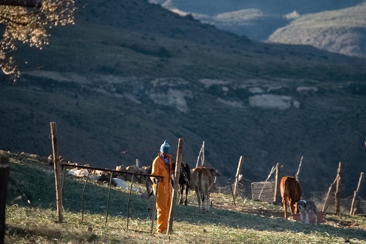 4408 Lesotho.jpg
