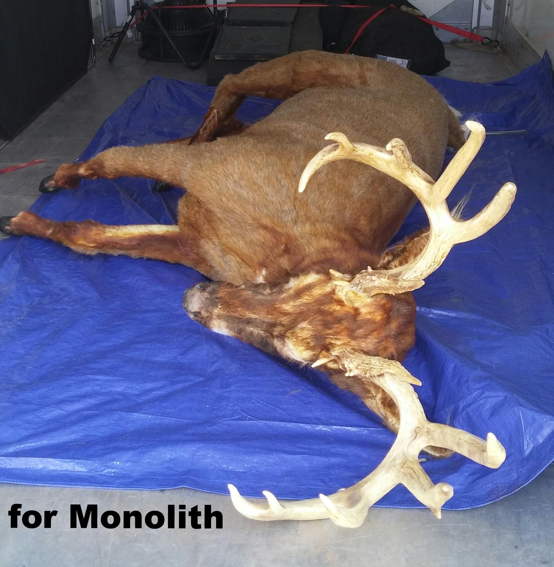 Deer 4-Monolith 2015.JPG