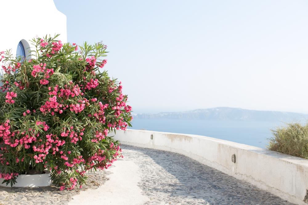 Santorini-46.jpg