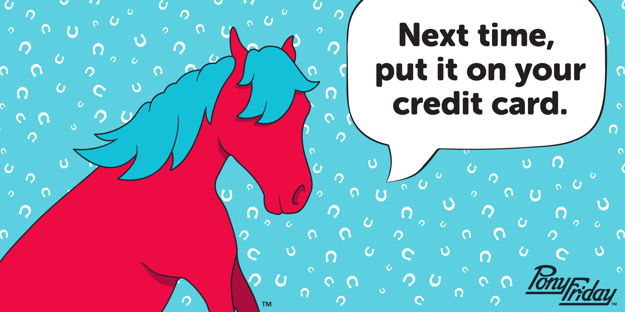 Pony-Friday-Credit-Card-Charge-It-Pony-Horseshoes-Lucky-Easy-Studio-Blog-Header.phg