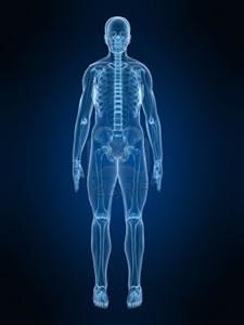 2867113-x-ray-skeleton3.jpg