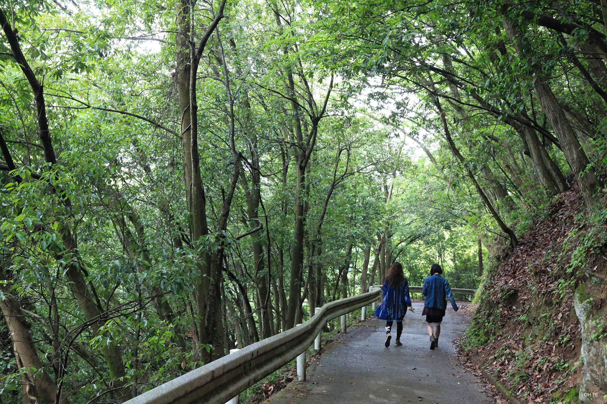 Walking in Fujino, Japan. Photo by Grace Hsieh