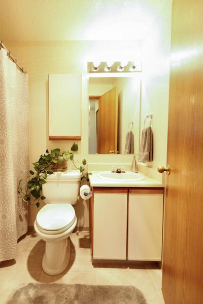 hilltop_in_bathroom.jpg