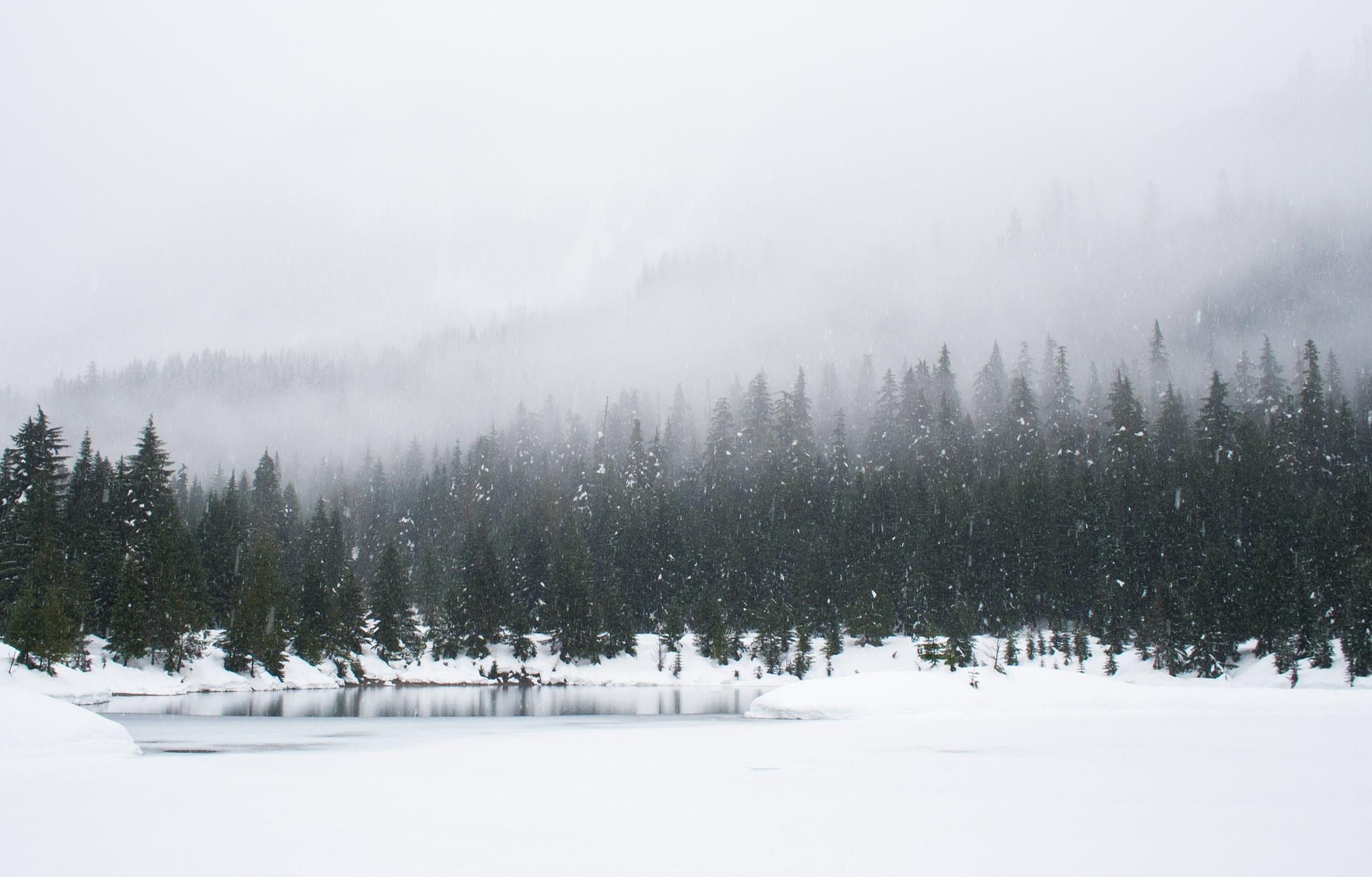 snow-photography-tips-white-balance
