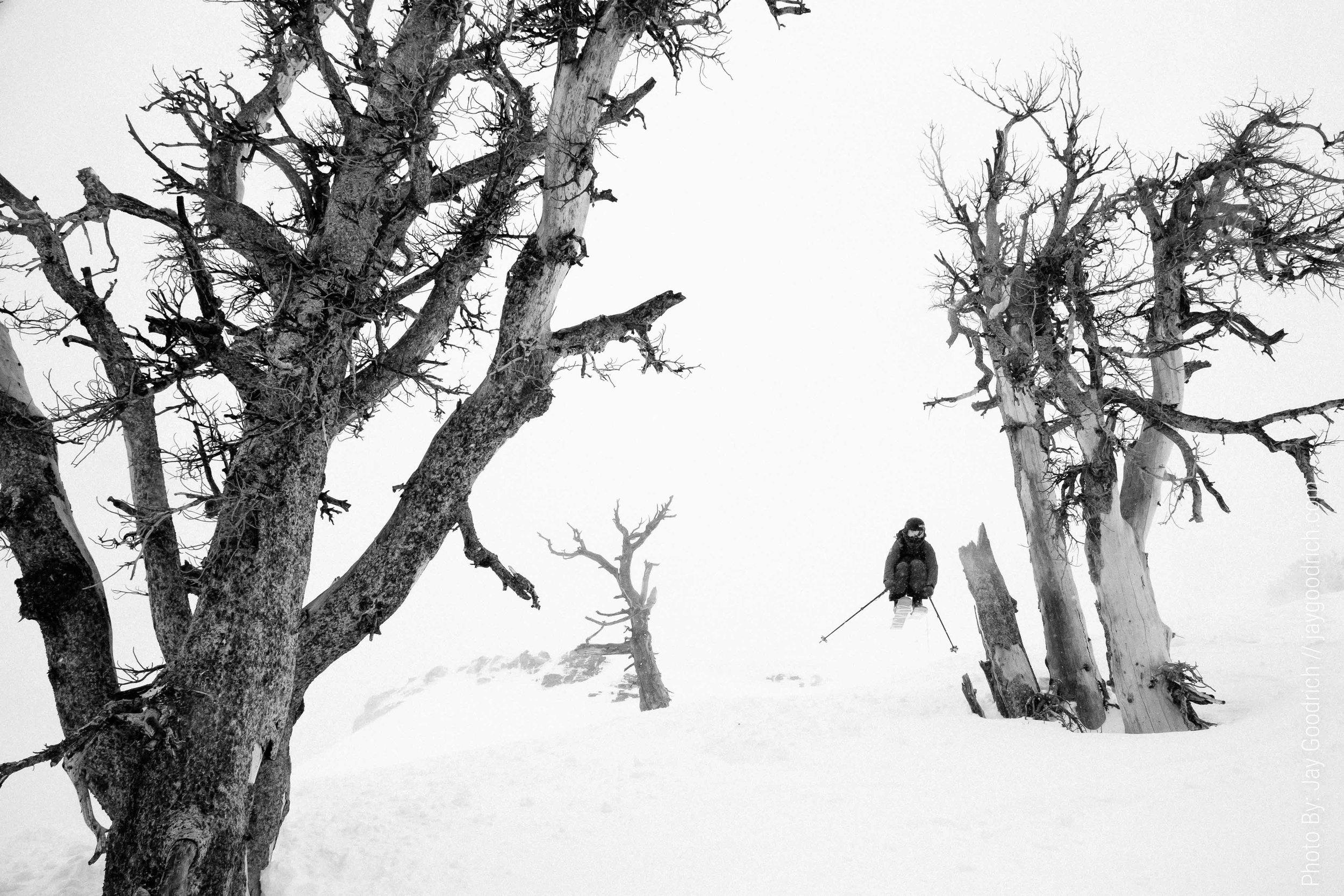 skiing-tetons-wyoming-7521.jpg
