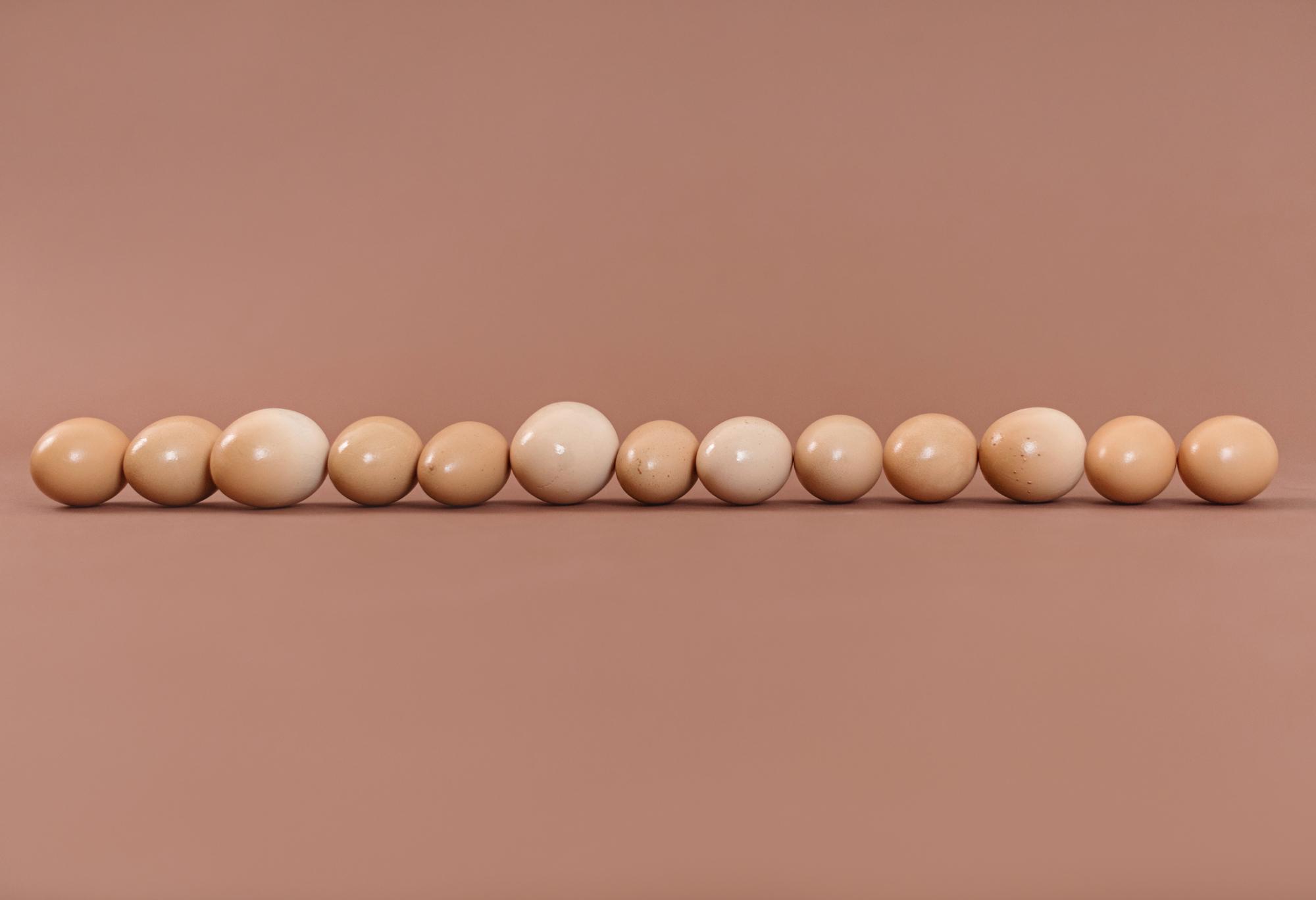 Eggs-APFW.jpg