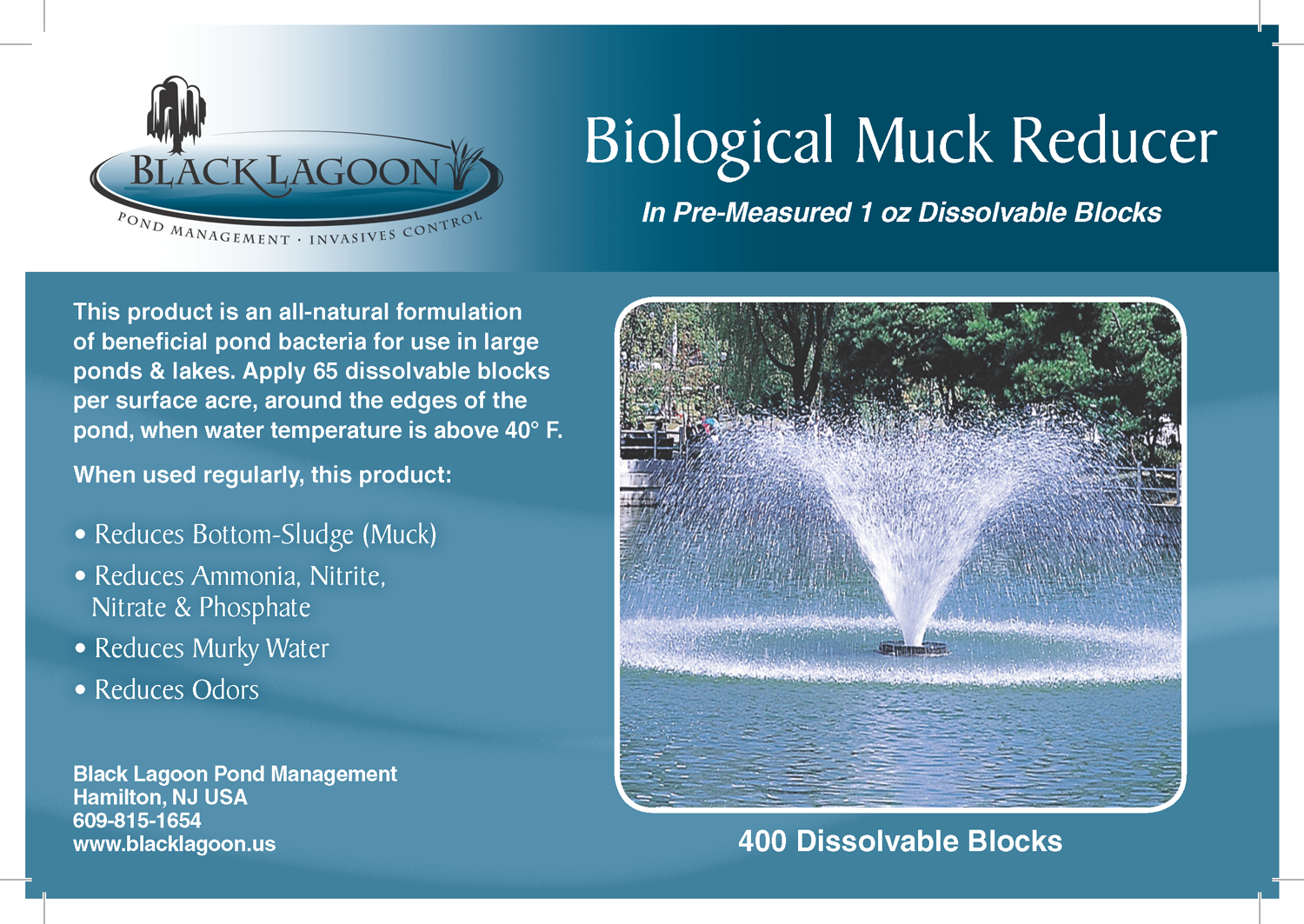 How to remove lake and pond muck biologically.