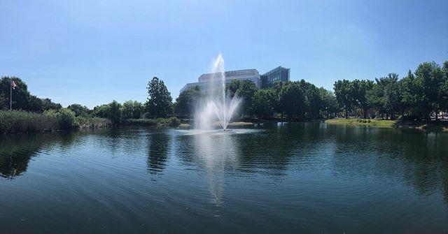 Kean University's Aquamaster Celestial⛲️