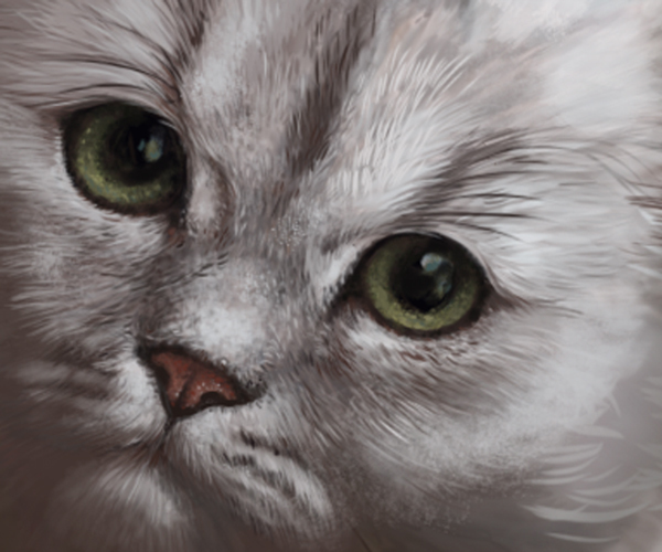 Sabrina close-up