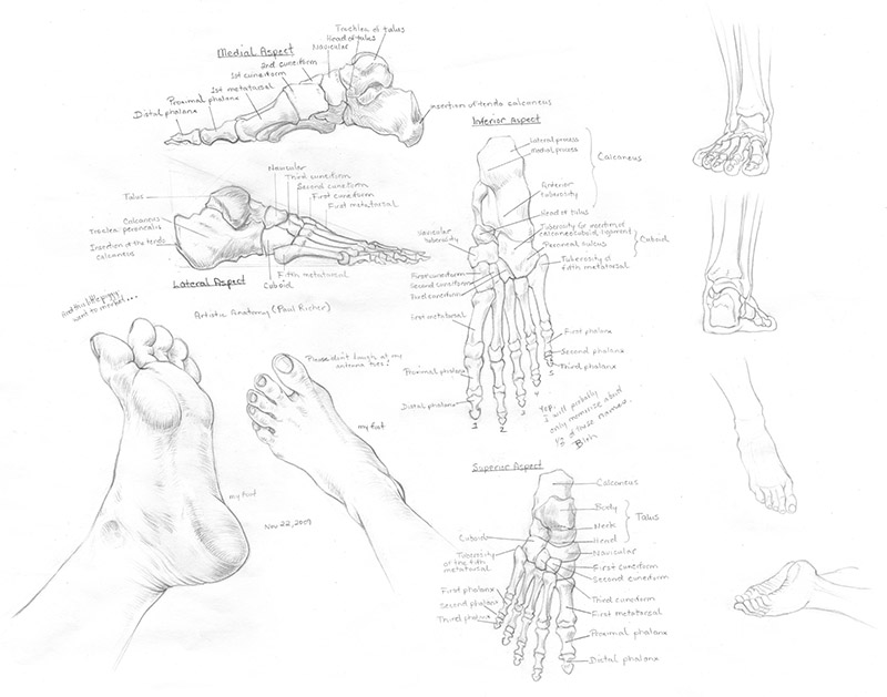 feet1_2009-11-22.jpg