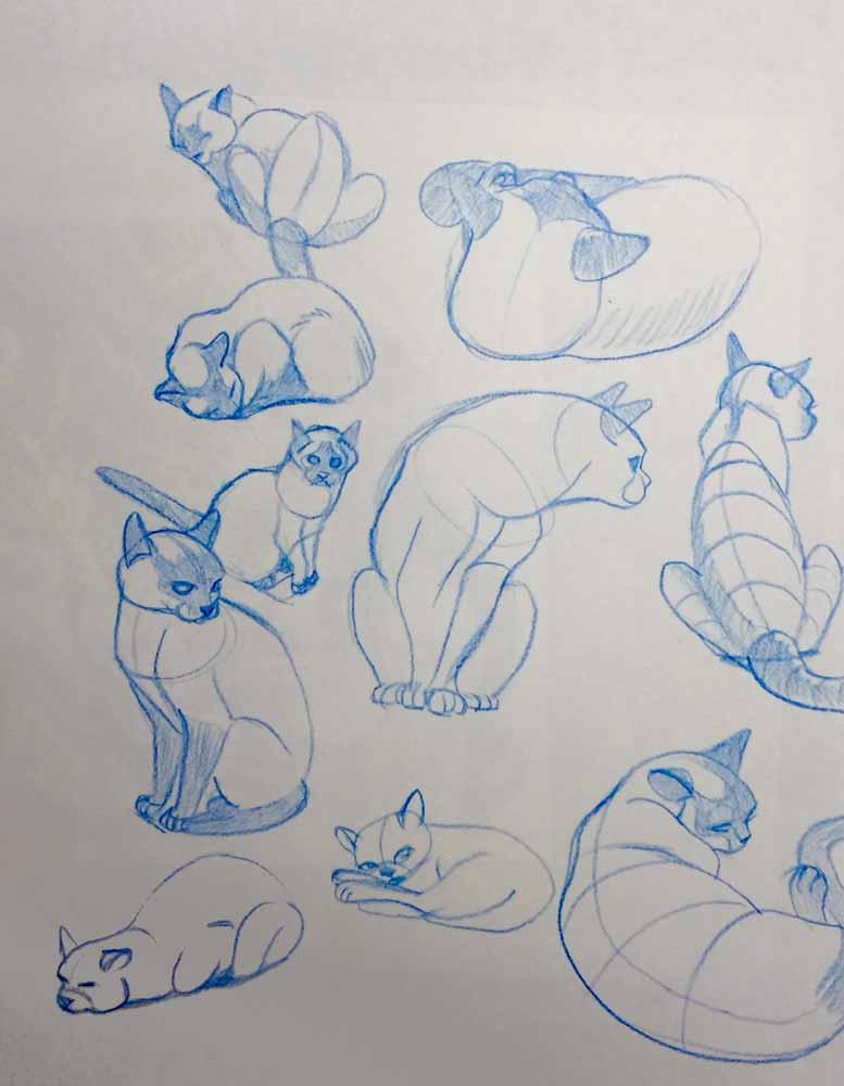 Cat-Sketches-01.jpg