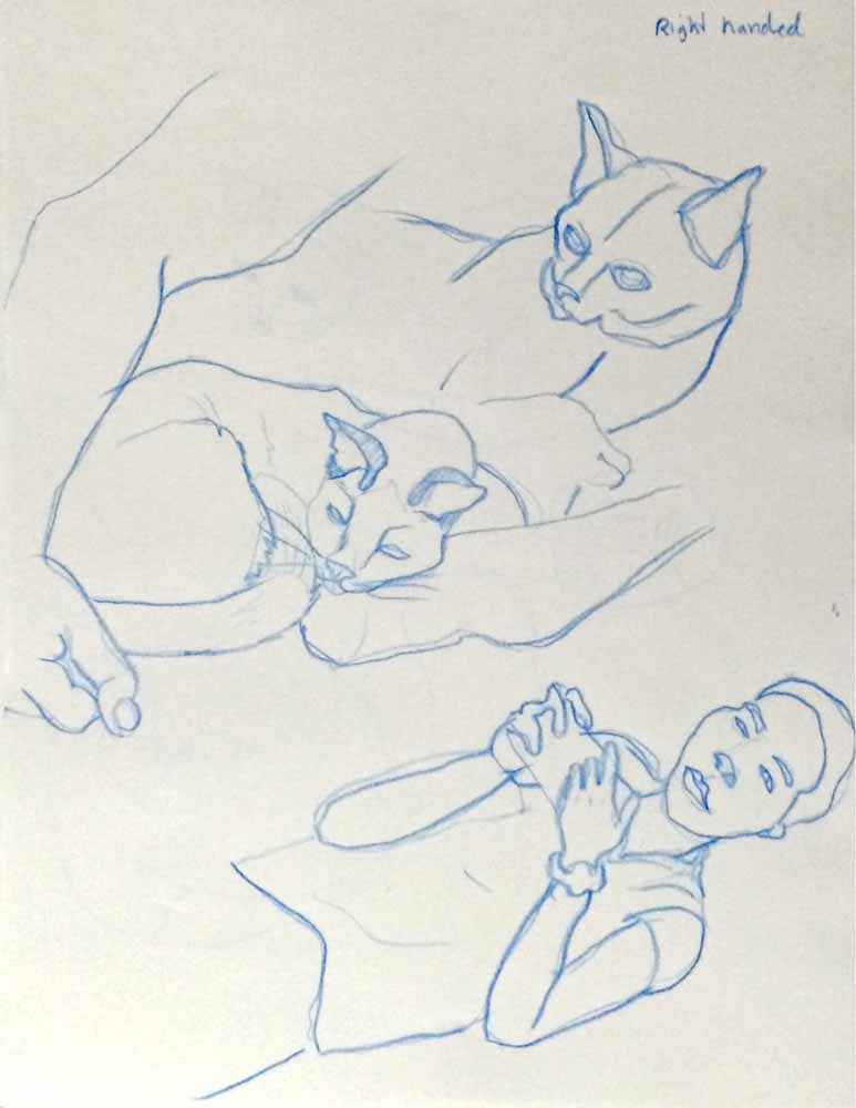 Cat-Sketches-03-non-dominant-hand.jpg