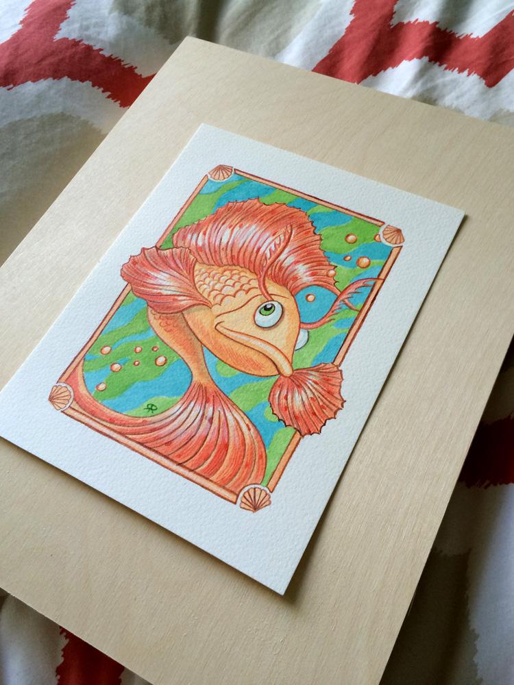 Betta-Fish-Photo-07.jpg