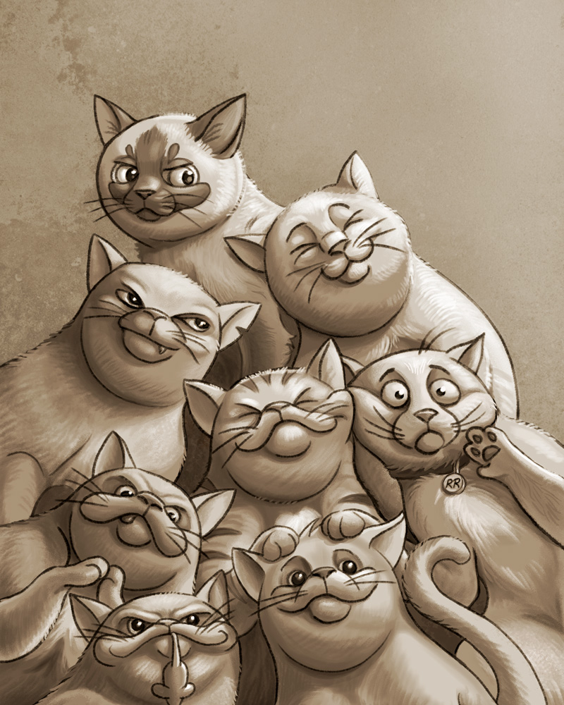 Cat Pack