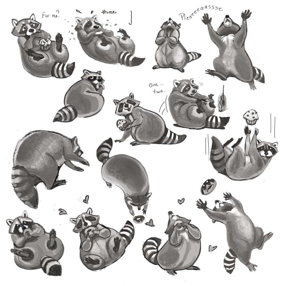 Raccoon Love - more roughs