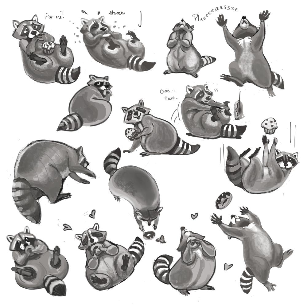 Raccoon Love - more roughs