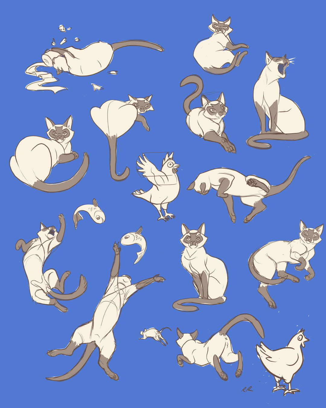 Studies of My Cat