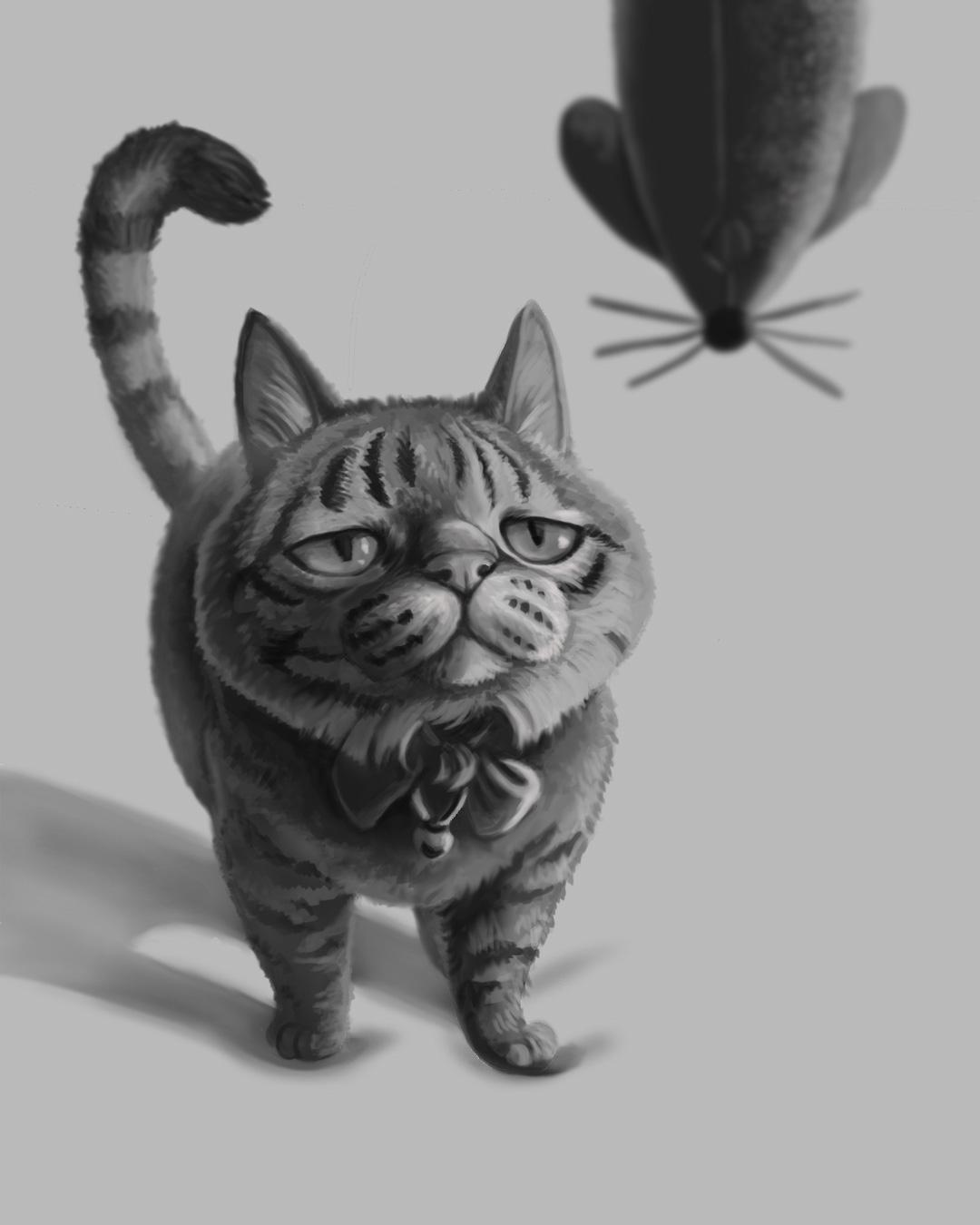Cat Value Composition Study