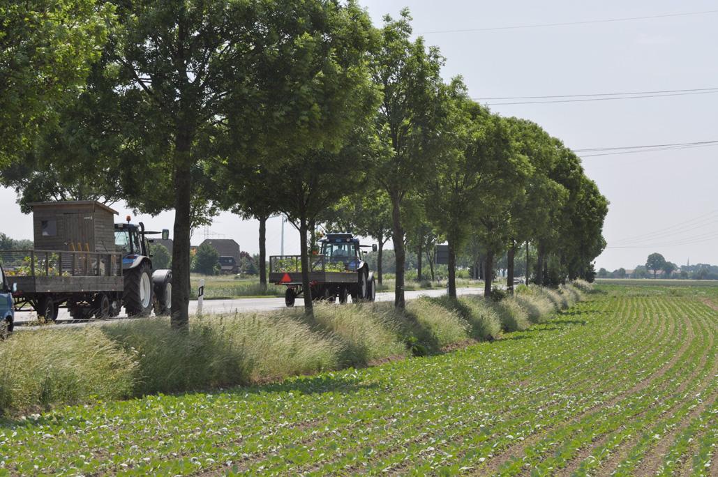 Vertrek vanuit Ypenburg het Groene Hart tegemoet.