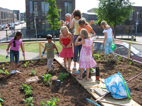 Vooral kinderen en bewoners rondom het plantsoen blijken geïnteresseerd in de mobiele volkstuin.