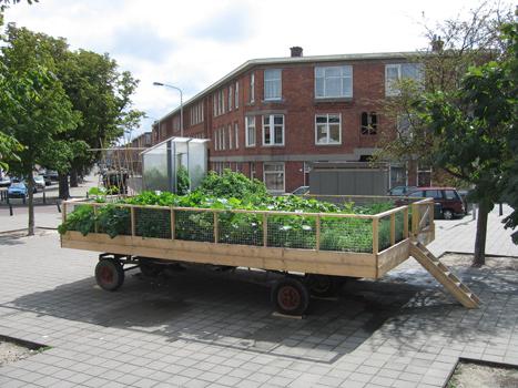 In de stad Den Haag kan mijn mobiele tuin tijdelijk een plek innemen die geen groenbestemming heeft; een trottoir, plein, stoep, snelweg. En zo de openbare ruimte tijdelijk van bestemming wijzigen en minder statisch maken.