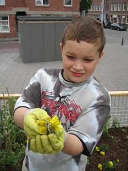 Ook in Transvaal bleken kinderen erg enthousiast voor het tuinieren.