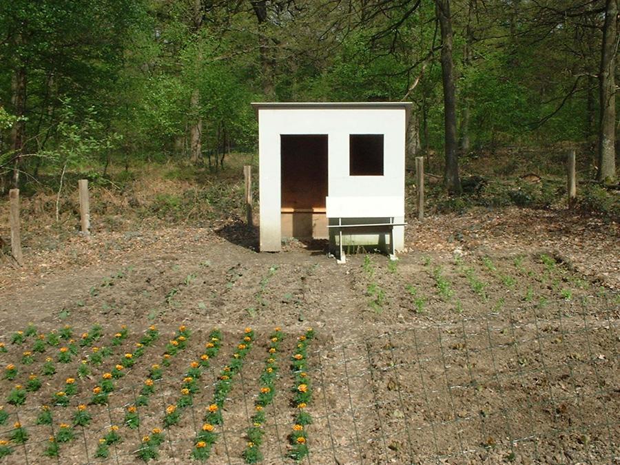 Sinds 2001 wordt de volkstuin beplant en onderhouden door kinderen van de basisschool, ook worden op deze school naar aanleiding van dit project lessen groenten kweken en tuinieren gegeven.