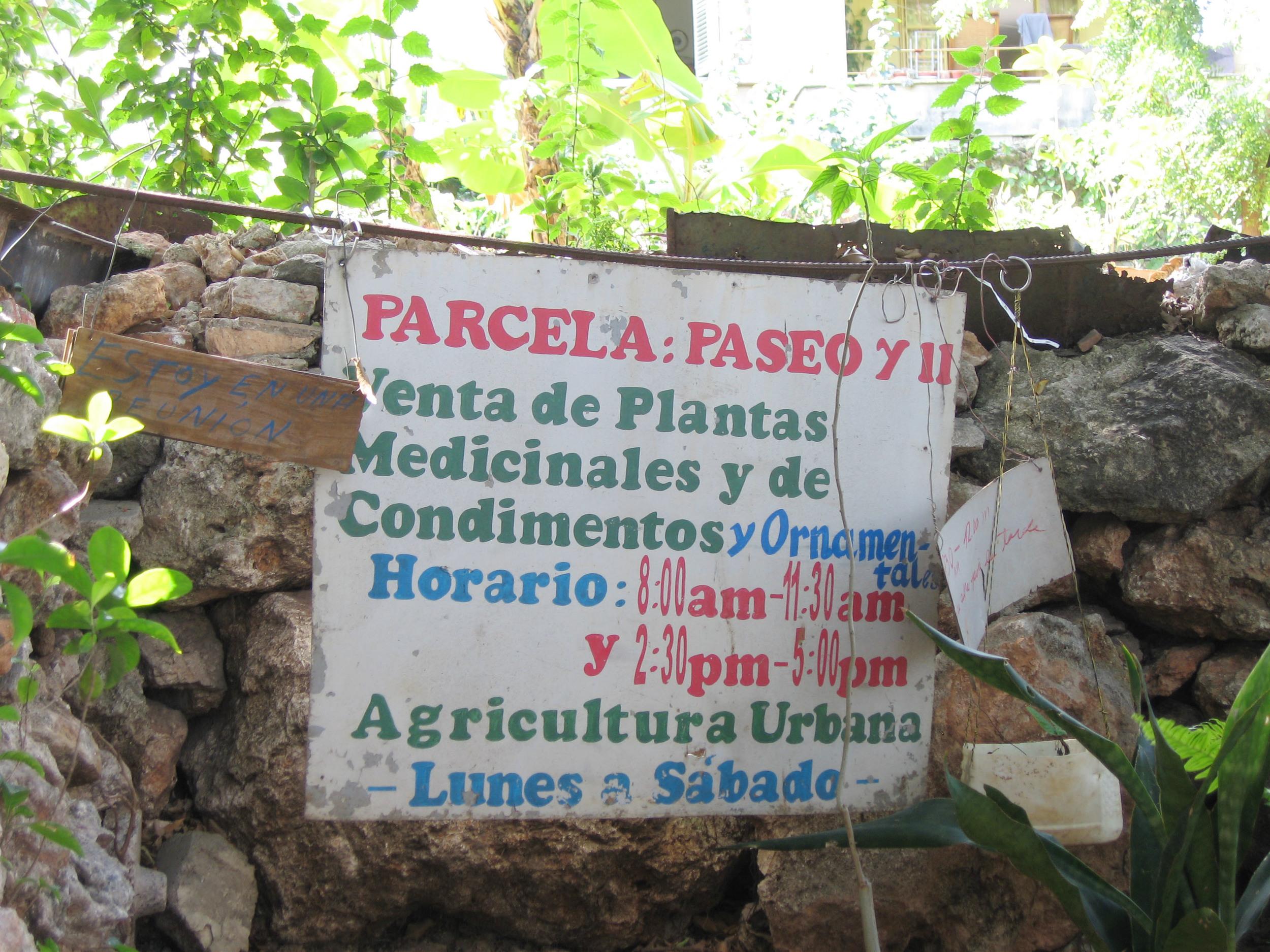 medicinale tuin.JPG