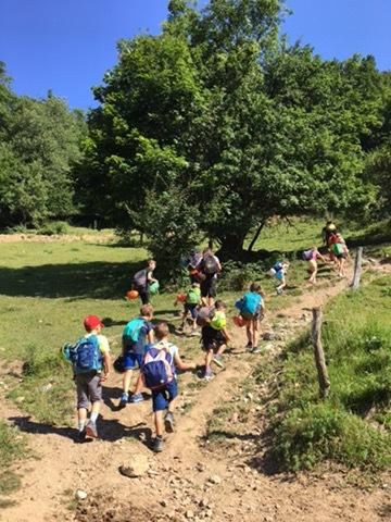 Plezalni tabor za otroke Grif_69.jpeg