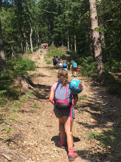 Plezalni tabor za otroke Grif_100.jpeg