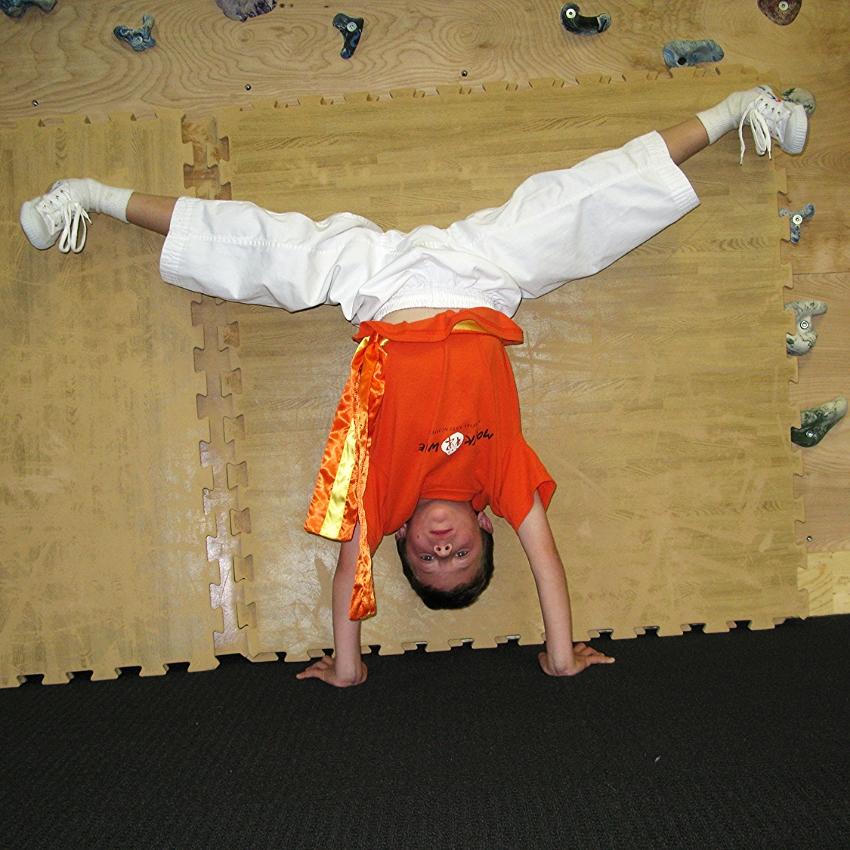 monk wise martial arts academy 221.jpg