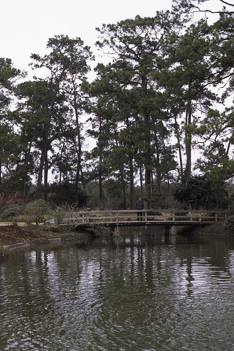 005 Ron Japanese Garden Bridge.jpg