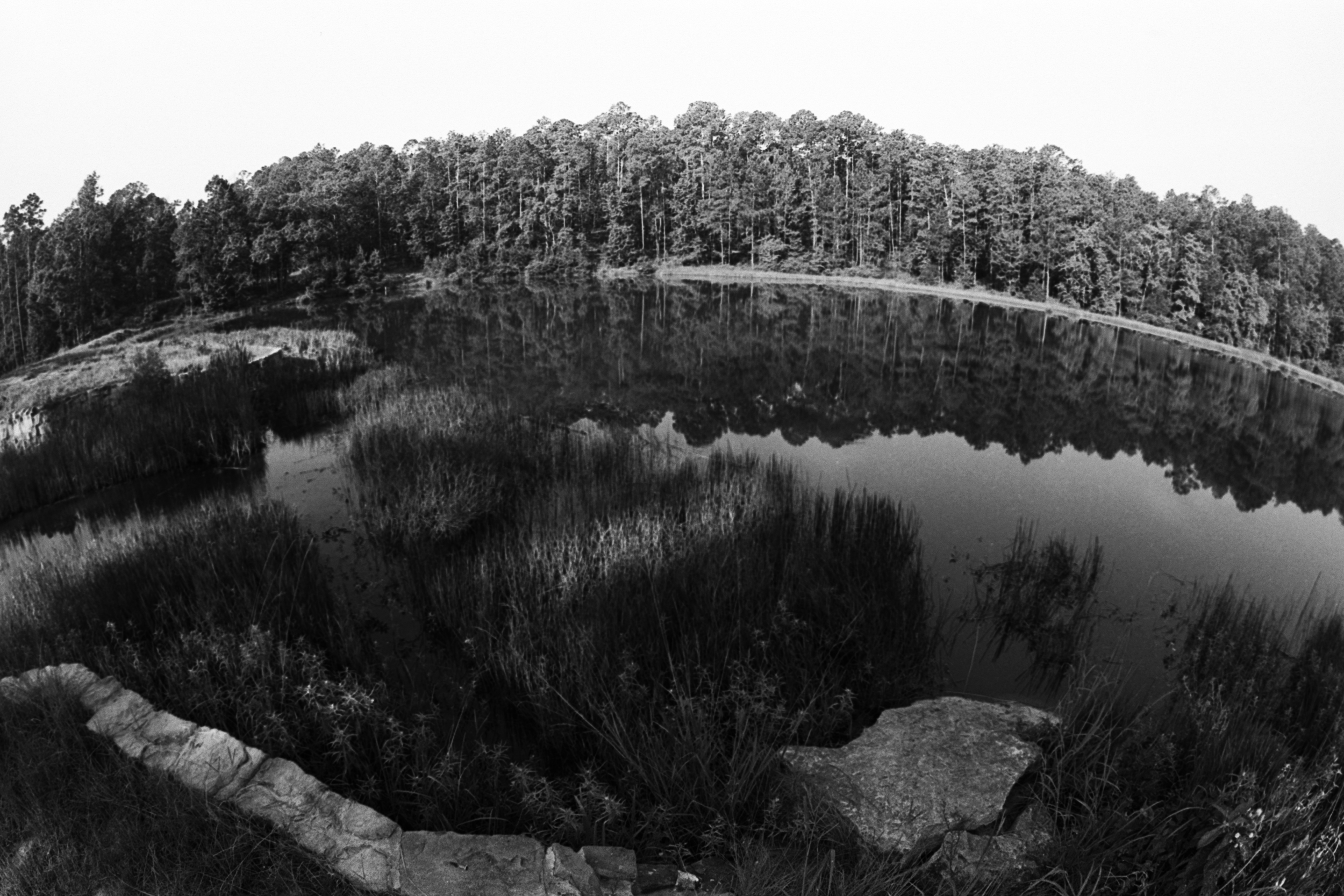 Boykin Springs Lake Fisheye.jpg